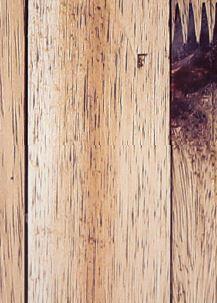 Capture test wood
